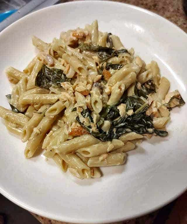 Salmon Alfredo pasta recipe mixed with penne pasta, spinach leaves and flakes salmon in a plate.